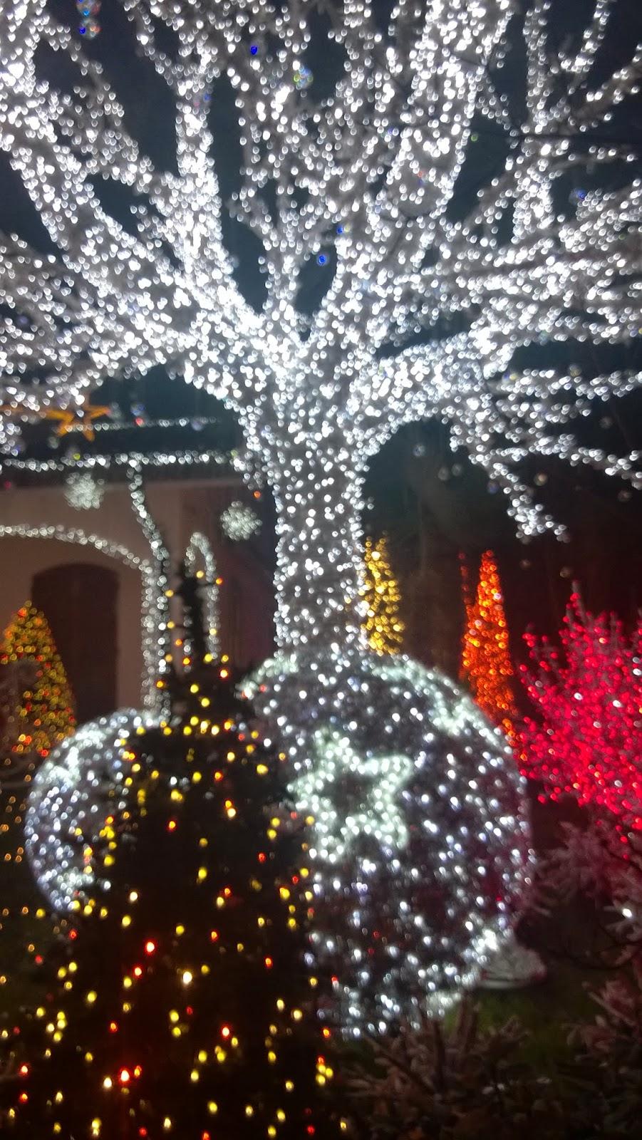 La casa di Babbo Natale a Melegnano  Viaggi e Delizie
